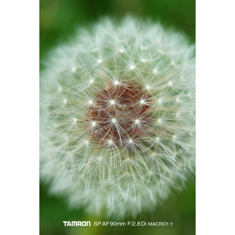 Tamron SP AF 90mm f/2.8 Di Macro objektiiv Canonile