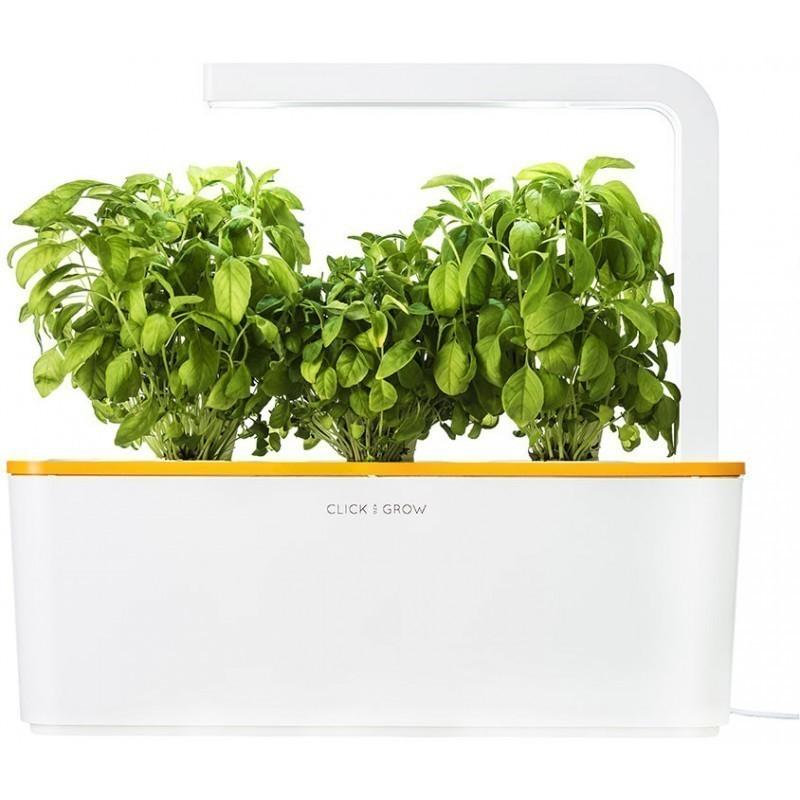 Click & Grow Smart Herb Garden, oranži kaanega