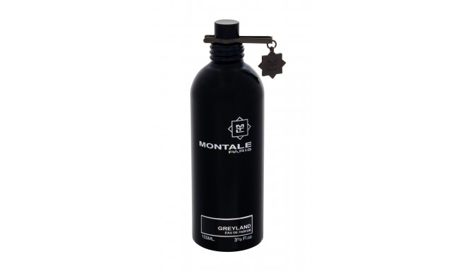 Montale Paris Greyland (100ml)