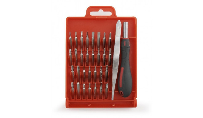 A set of 32 precision tools