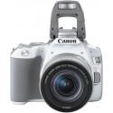 Canon EOS 250D Youtuber Kit, valge
