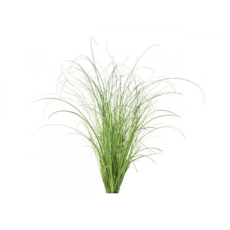 Click & Grow Smart Refill Dekoratiivmuru 3tk