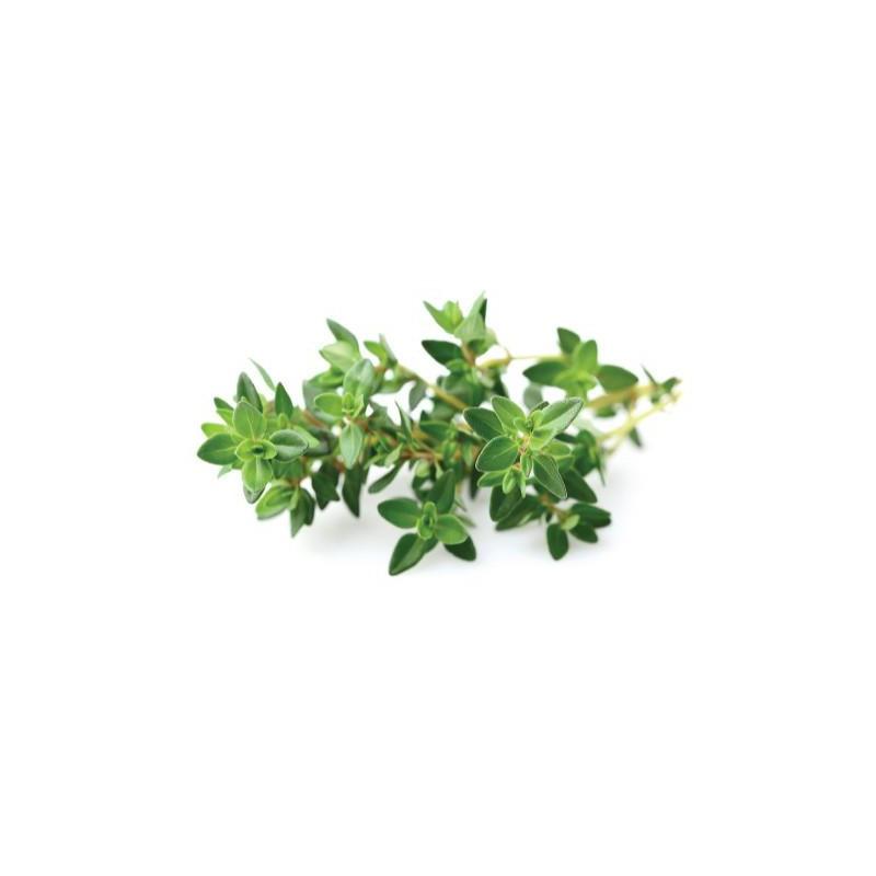 Click & Grow Smart Garden refill Tüümian 3tk