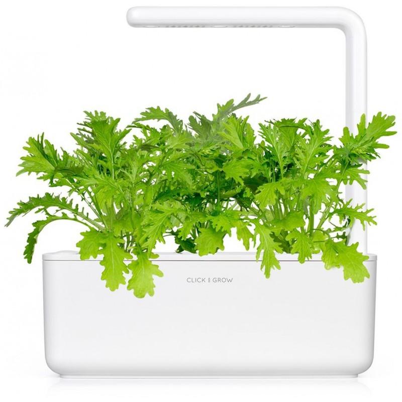 Click & Grow Smart Garden refill Sinep 3tk