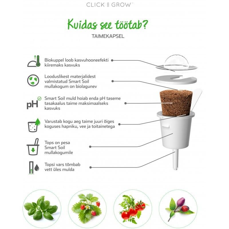 Click & Grow Smart Garden refill Kollane paprika 3tk