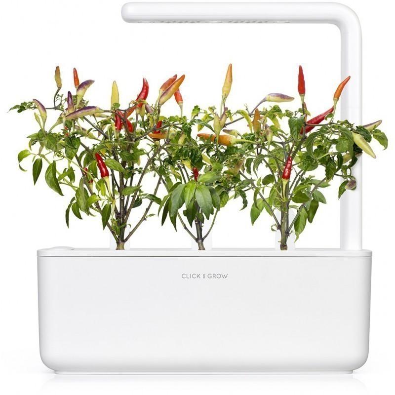Click & Grow Smart Garden refill Punane tšillipipar 3tk
