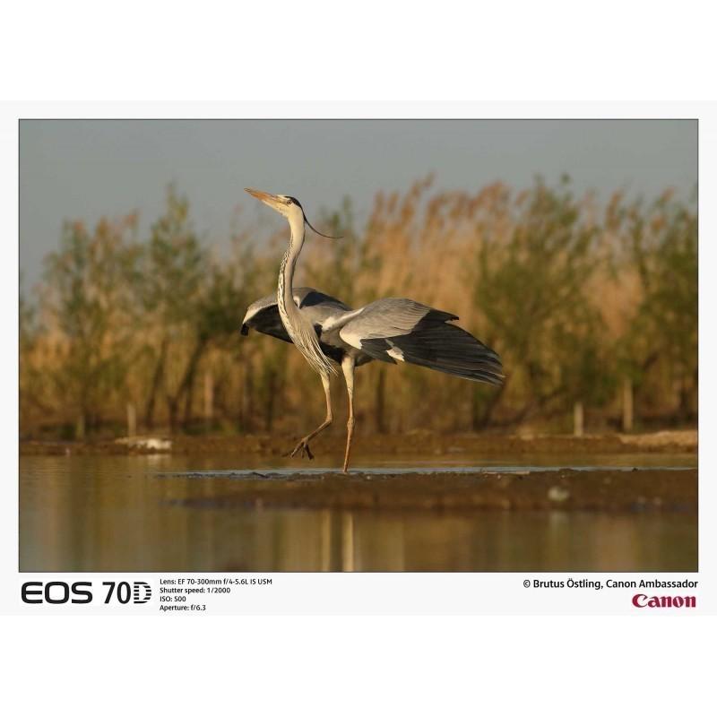 Canon EOS 70D + Tamron 10-24mm