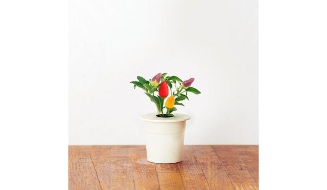 Click & Grow Smart Herb Garden кассета, Перец чили (3 шт)