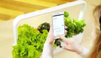 Click & Grow uus Smart Garden 9 PRO on Bluetoothi abil juhitav